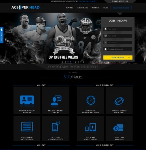 AcePerHead.com Sportsbook PPH Review