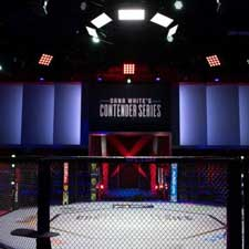 Nevada Suspends Combat Sports Events Until March 25
